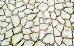 Textura en la tierra Imagen de archivo libre de regalías