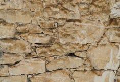 Textura envelhecida ou fundo da parede de pedra da rocha do shell Imagem de Stock Royalty Free