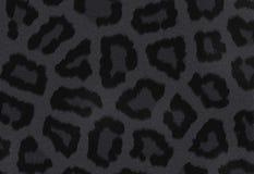 Textura escura da pantera Fotos de Stock