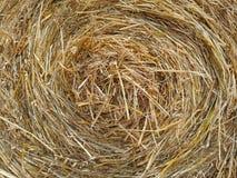 Textura espiral de oro del heno Fotografía de archivo