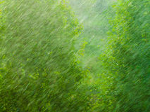 Textura exterior lluviosa del fondo del verde de la ventana Fotos de archivo