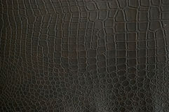 Textura falsificada do crocodilo Fotos de Stock Royalty Free