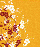 Textura floral Fotografia de Stock