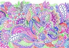 Textura floral colorida do fundo da garatuja Fotos de Stock