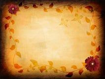 Textura floral de Grunge Imagens de Stock Royalty Free