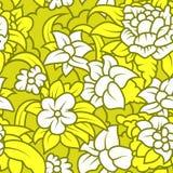 Textura floral inconsútil con las flores blancas Fotografía de archivo