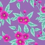 Textura floral sem emenda Fotos de Stock