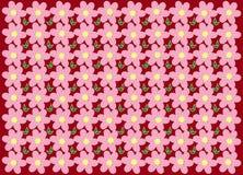 Textura Flores em um fundo vermelho Imagens de Stock Royalty Free