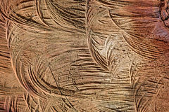 Textura, fondo, madera natural Foto de archivo libre de regalías