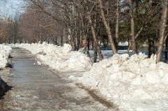Textura, fondo, modelo Los derretimientos de la nieve de la primavera El beginni imagen de archivo