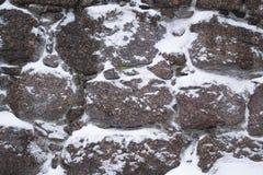 Textura, fondo natural del invierno Fotografía de archivo libre de regalías