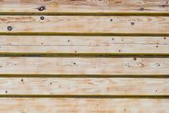 Textura, fondo, pared de madera, madera ligera, pino foto de archivo libre de regalías