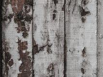 Textura, fundo de pranchas pintadas Imagens de Stock