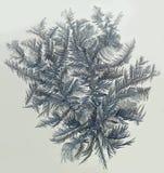 Textura gelado abstrata da água geada, Imagens de Stock Royalty Free