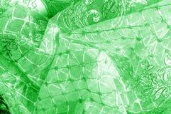 Textura Gráfico Fondo La tela de plata del cordón es verde esto Fotografía de archivo libre de regalías