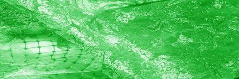 Textura Gráfico Fondo La tela de plata del cordón es verde esto Imagenes de archivo