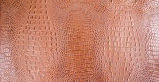 Textura grabada en relieve Orangish del cuero del cocodrilo Imagen de archivo