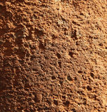 Textura Grained da pedra calcária Fotografia de Stock