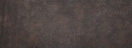 Textura grande del cuero de la talla Imagen de archivo