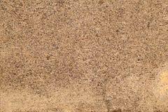 Textura granulada da areia fotos de stock