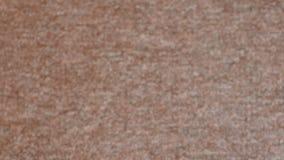 Textura gris de la alfombra del shorthair blur almacen de metraje de vídeo