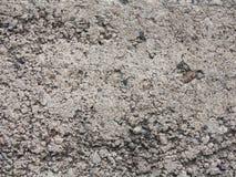 Textura gris de la pared del cemento. Foto de archivo libre de regalías