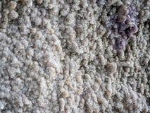 Textura gris de la piedra de la roca Fotos de archivo libres de regalías