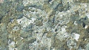 Textura gris de la roca Imagen de archivo