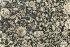 Textura gris de la teja imagen de archivo