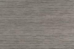 Textura gris exclusiva del roble en macro Primer del fondo natural Foto de archivo libre de regalías