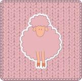 Textura hecha punto rosa con las ovejas Imagen de archivo