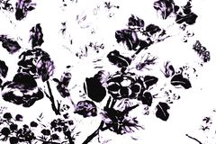 Textura hermosa del extracto blanco y negro las hojas y los pájaros del árbol en fondo y el papel pintado aislados pared blanca d libre illustration