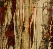 Textura hermosa del fondo natural de la madera aterrorizada agradable agradable de madera aterrorizada en colores rojos y amarill imagen de archivo libre de regalías