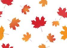 Textura inconsútil con las hojas de otoño Imagenes de archivo