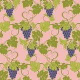 Textura inconsútil con las vides y los manojos de uvas Imagen de archivo