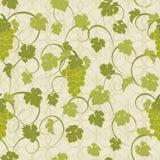 Textura inconsútil con las vides y los manojos de uvas Imagen de archivo libre de regalías