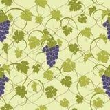 Textura inconsútil con las vides y los manojos de uvas Imágenes de archivo libres de regalías