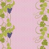Textura inconsútil con las vides y los manojos de uvas Fotografía de archivo libre de regalías