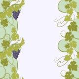 Textura inconsútil con las vides y los manojos de uvas Fotos de archivo libres de regalías