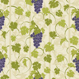 Textura inconsútil con las vides y los manojos de uvas Foto de archivo