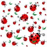 Textura inconsútil con los ladybugs de la historieta Fotografía de archivo libre de regalías