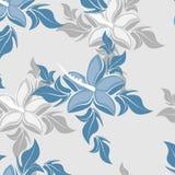 Textura inconsútil de la flor del modelo del vector Imagen de archivo