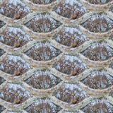 Textura inconsútil de la foto de la verja de acero en la tierra congelada fría imagen de archivo libre de regalías