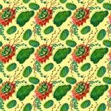 Textura inconsútil del modelo de la acuarela - los succulents plantan el clip art Imagenes de archivo