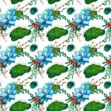 Textura inconsútil del modelo de la acuarela - los succulents plantan el clip art Foto de archivo