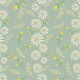 Textura inconsútil del vector Diseño floral del bordado con los camomiles Modelo de flores en colores pastel decorativo ilustración del vector