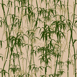 Textura inconsútil de bambú. Imagenes de archivo