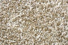 Textura larga blanca de la alfombra del pelo Fotos de archivo libres de regalías