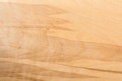 Textura ligera de la madera contrachapada del abedul, fondo abstracto Foto de archivo libre de regalías