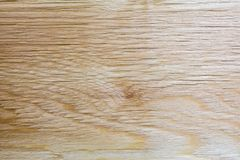 Textura ligera de la madera contrachapada del abedul, fondo abstracto Imágenes de archivo libres de regalías
